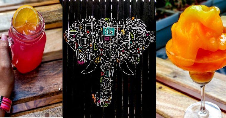 Elephant & Co